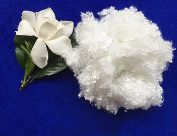 China 7Dx64MM raw white hollow conjugated siliconized polyester staple fiber in virgin grade supplier